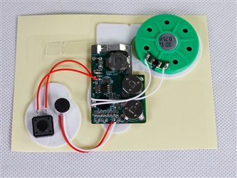 Self-Recordable 30 Second Sound Module for Greeting Card - Copy