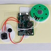 Self-Recordable 30 Second Sound Module for Greeting Card